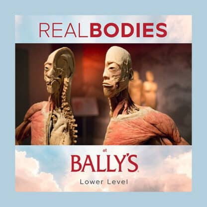 Real Bodies